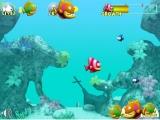 Flash игра Забавная аркада из жизни рыб