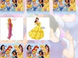 Disney Princess Memory