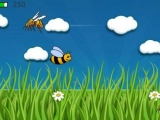 Bee Flight