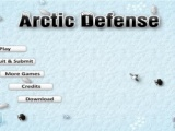 Arctic defense