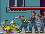 flash игра Ninja Turtle The Return of King