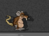 Cheesee The Rat
