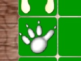 Animal Footprint Pairs