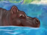 Min Cool Hippo