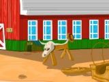 Adventure Horses