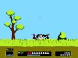 Duck hunt: original