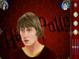 flash игра Harry Potter