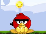 flash игра Angry birds: circus troupe