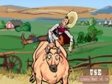 Cheyenne rodeo