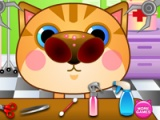 flash игра Doctor. Cat noise