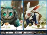 Alice in Wonderland. Similarities