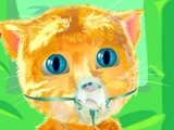 Ginger. Heart surgery