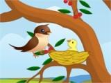 flash игра Bird feeding