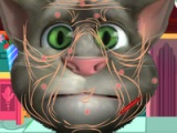 flash игра Talking Tom. Cosmetic surgery